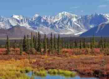 Alaska Holiday