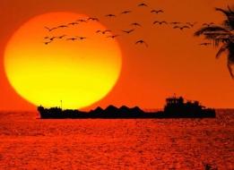 WEST INDIA TEMPLE & BEACH TOUR